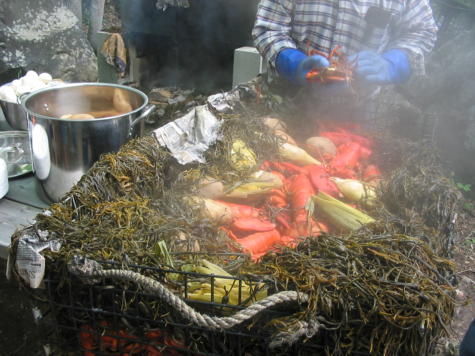 lobster bake on beach