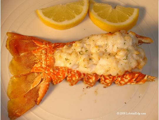 Broiled lobster tail recipes easy