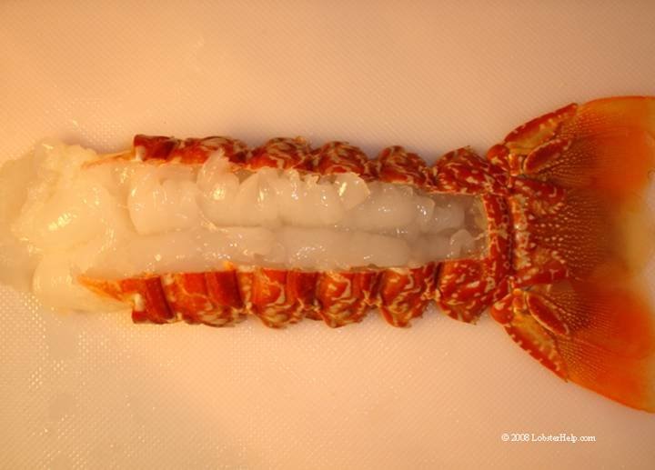 South African Lobster Tail 10