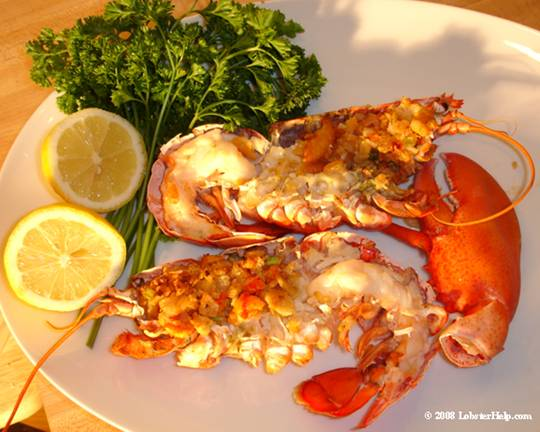 ... or steamed lobster then try this recipe for baked stuffed lobster