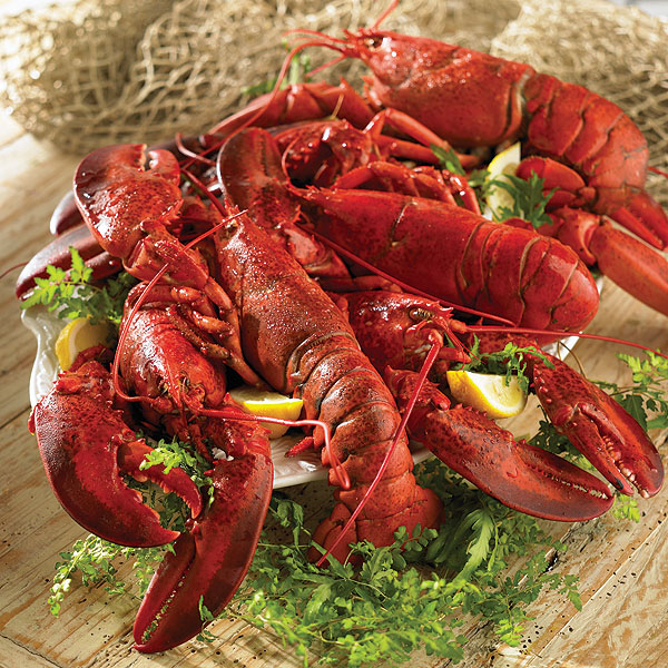 Lobster Recipes - The Best Lobster Recipes